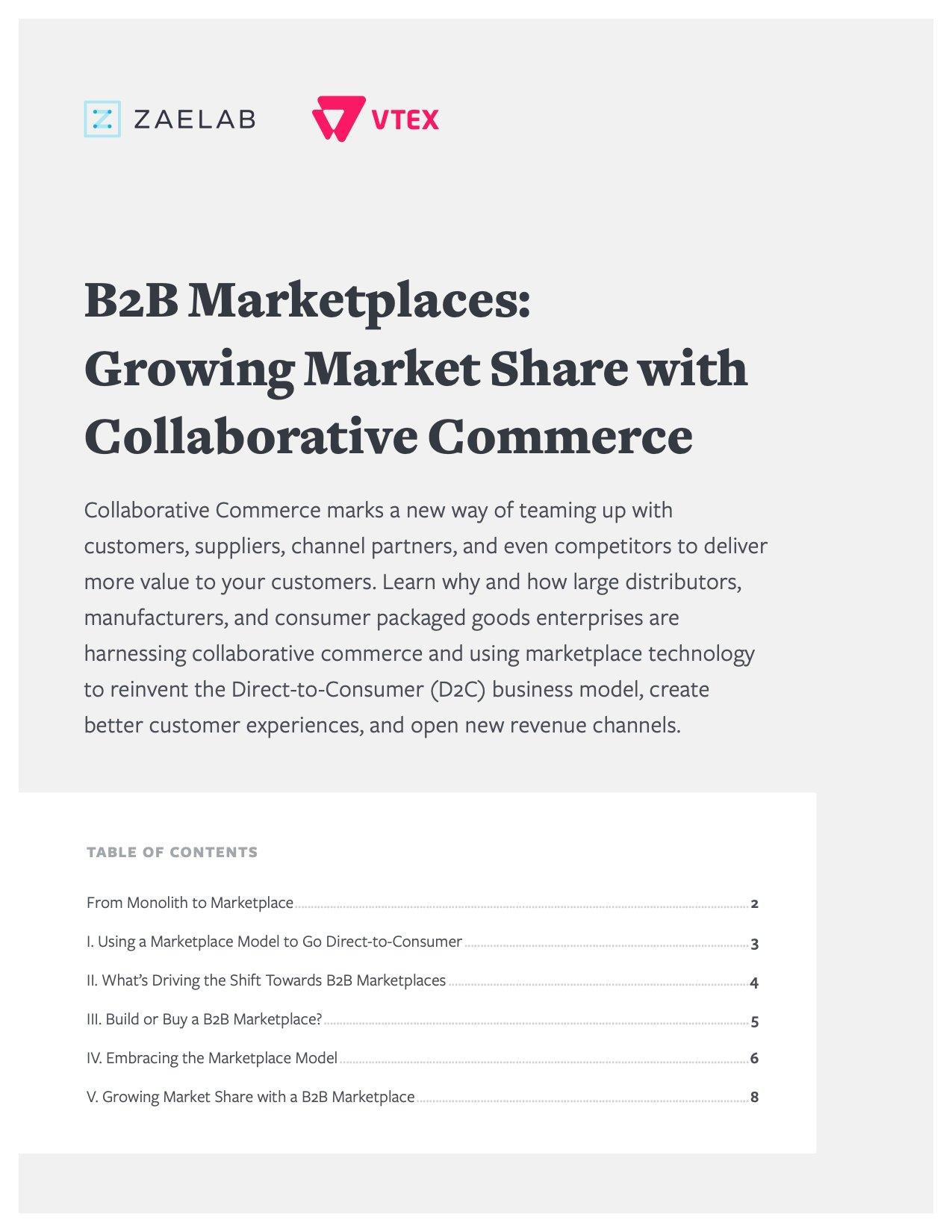 Whitepaper-B2B-Marketplaces